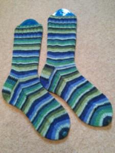 Regia socks